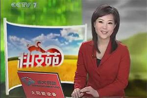 CCTV-7科技苑:种植藏红花只为取花丝