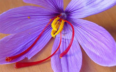 藏红花真假怎么鉴别怎么辨别?