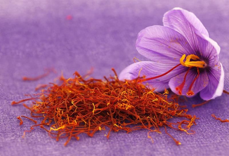藏红花花朵和藏红花花丝