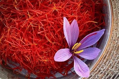 藏红花的功效与用法