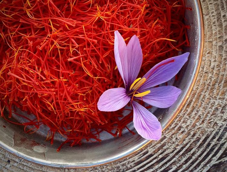 藏紅花花絲和藏紅花花朵