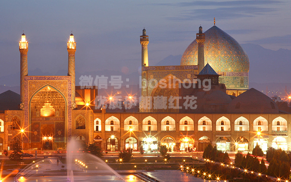 伊朗清真寺凌晨夜景