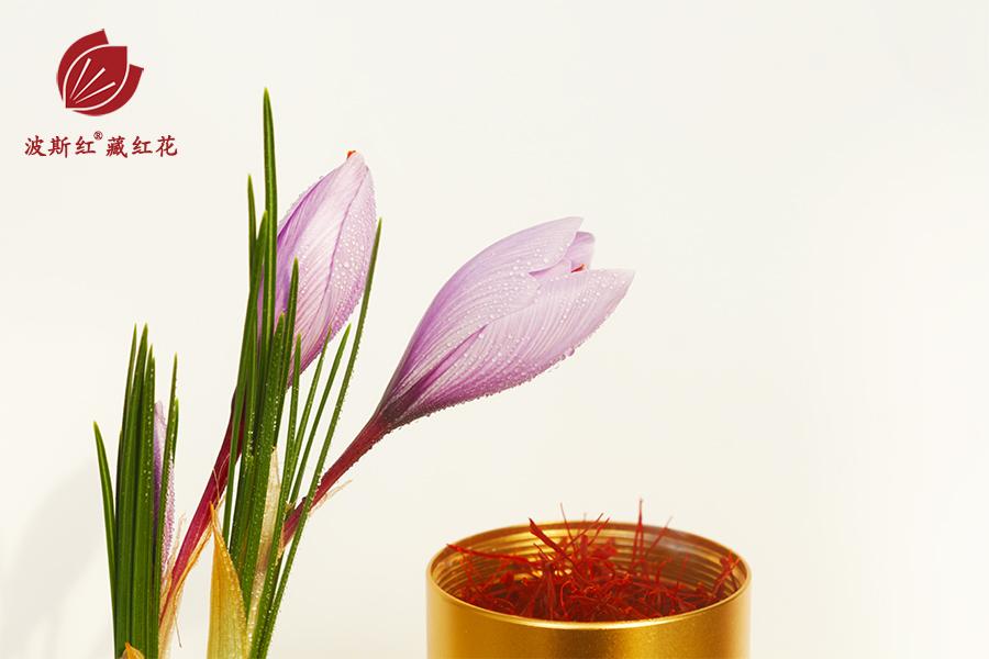 藏紅花和瓶裝藏紅花花絲