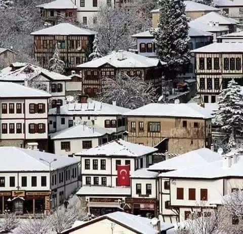 雪中的番红花城