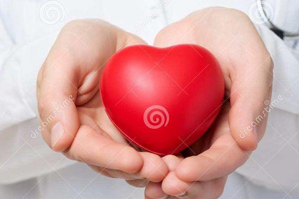 藏紅花保護心臟