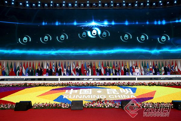 第5届南博会开幕式
