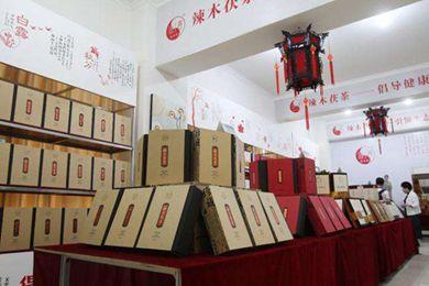 丝路沿线三国友人参观辣木茯茶