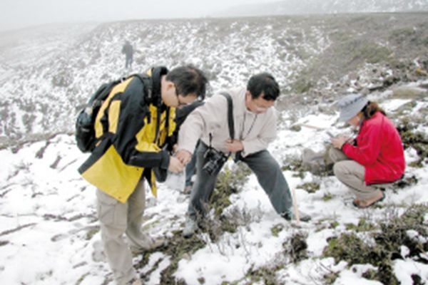 野外考察冬蟲夏草生長環境