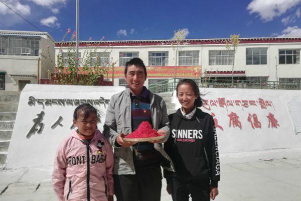 日朗鄉村民羅平父女仨摘下了滿滿一盆藏紅花花蕊后合影留念慶祝豐收