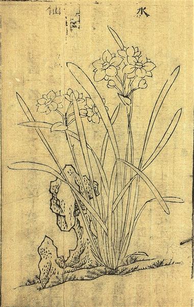 明代画家笔下的水仙