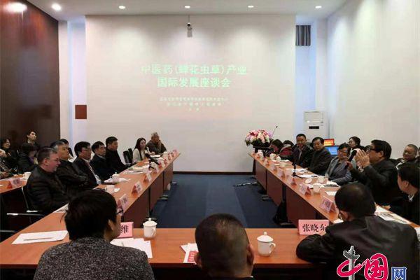 中医药(蝉花虫草)产业国际发展座谈会