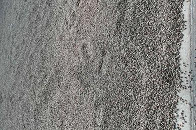 晾晒辣木籽的图片