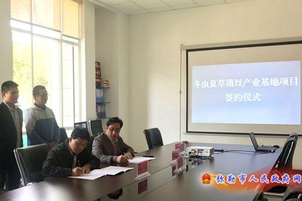 冬虫夏草菌丝产业基地项目云南省弥勒市冬虫夏草菌丝产业基地项目成功签约