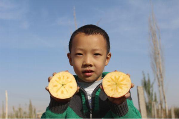 阿克蘇冰糖心蘋果