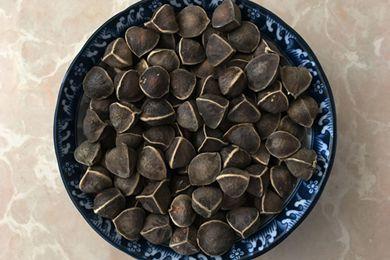 吃辣木籽有用吗