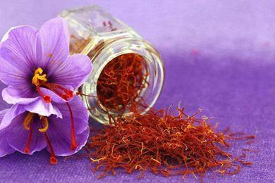 藏红花从克里特岛米诺斯文明就为人所知