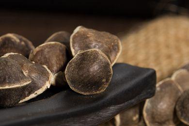 什么辣木籽最好 哪里产的辣木籽最好