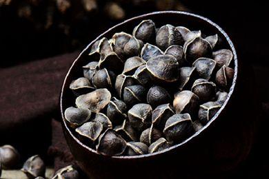 辣木籽一天最多吃几粒