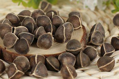 辣木籽吃多少合适 辣木籽怎么吃好