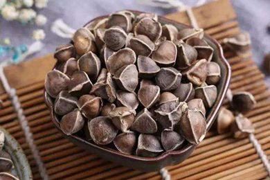 辣木籽是中药吗 中医使用辣木籽吗