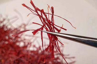 藏红花是治什么的