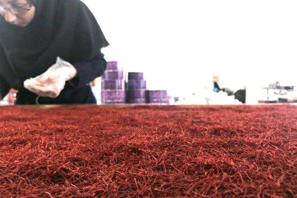 藥材批發市場藏紅花1萬元一斤