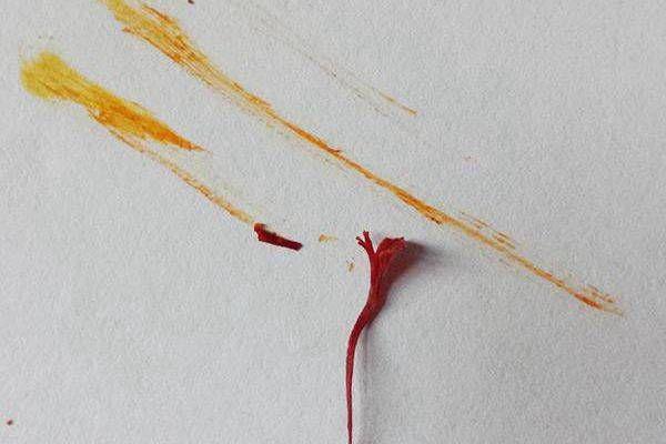 真藏红花的擦拭痕迹显黄色