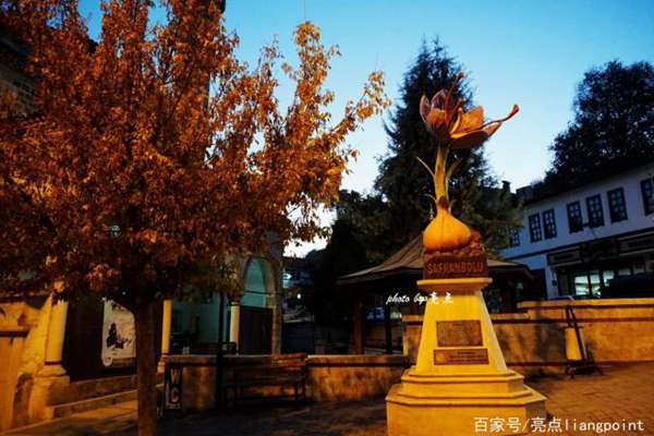 番红花城的藏红花雕塑
