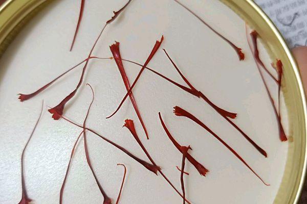 西红花抗肿瘤