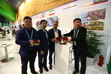 进博会上伊朗最大的藏红花出口商想把最好的藏红花带到中国