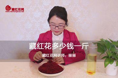 藏红花多少钱一斤