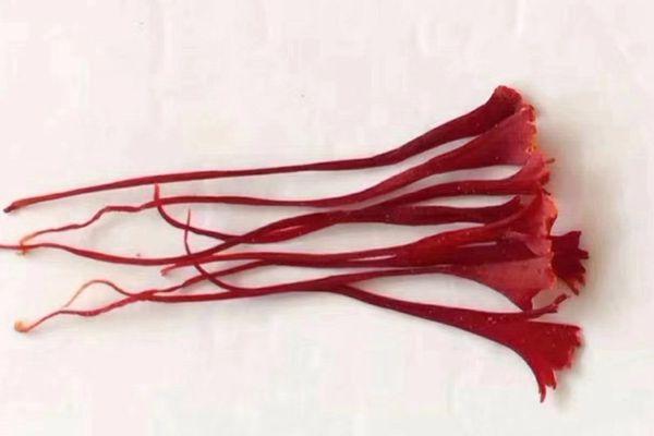 藏红花鉴别方法之观察法