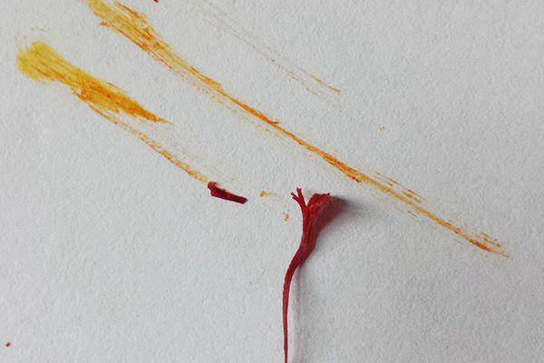 藏红花鉴别方法之擦拭法
