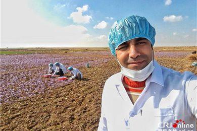 疫情与制裁双重压力下,伊朗民众如何坚韧面对生活?