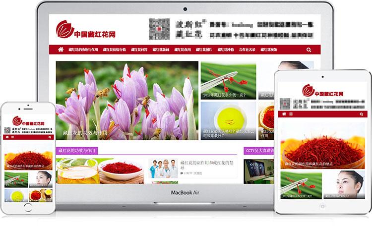 中國藏紅花網在各種瀏覽器上的效果圖