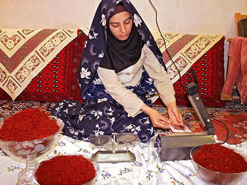 阿拉伯婦女在包裝藏紅花