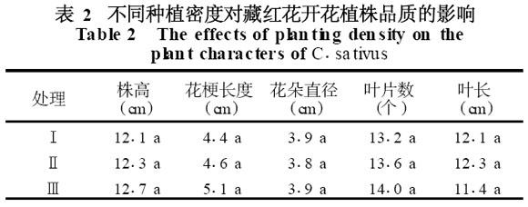 表2 不同種植密度對藏紅花開花植株品質的影響