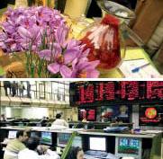 藏紅花進入伊朗商品交易所