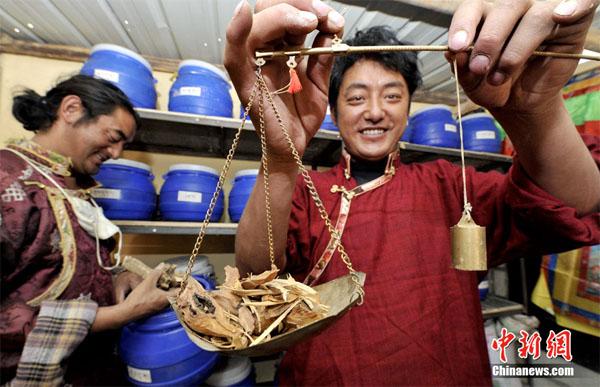 藏香师仁青德哲德哲(图左)和哥哥在严格按照配比准备藏香材料 中新社发 李林 摄