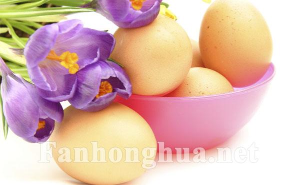 紫色番红花和鸡蛋