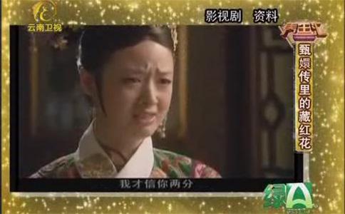 甄嬛傳里的藏紅花視頻截圖