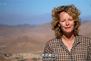 BBC紀錄片 香料之路 藏紅花