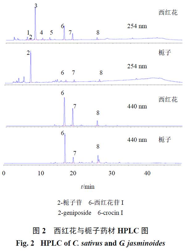 图2 西红花与栀子药材HPLC 图