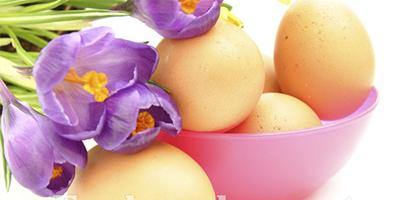 静物摄影:番红花和鸡蛋 9P