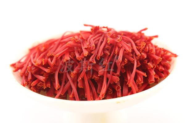 刚采摘的新鲜藏红花花丝图片
