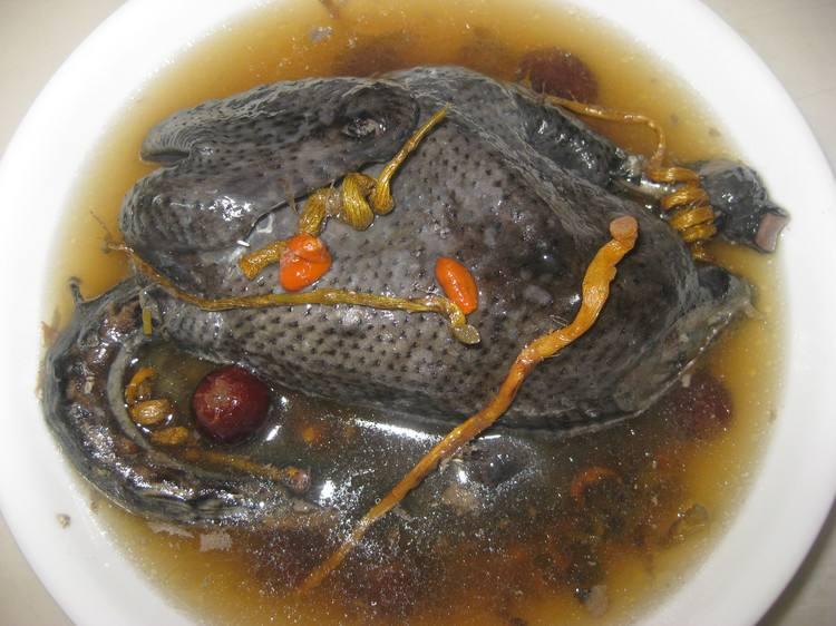 鐵皮石斛煲烏骨雞湯