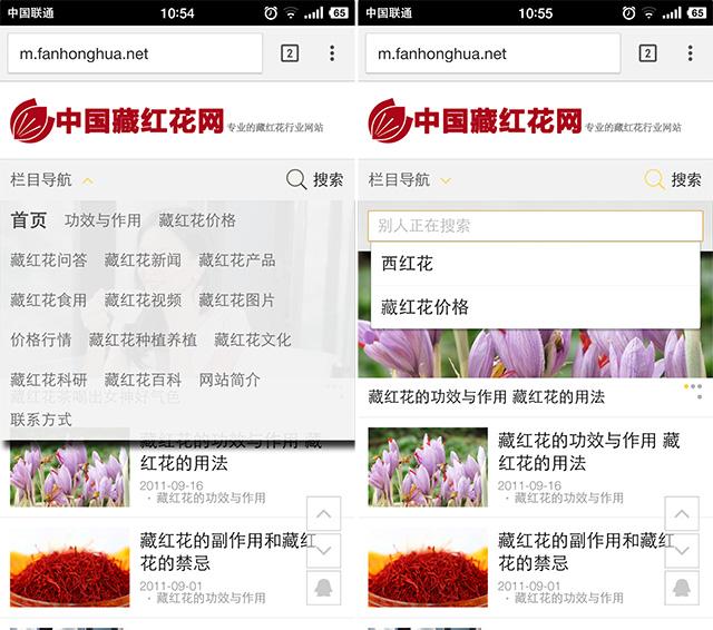 新版手機站導航欄截圖和搜索欄截圖