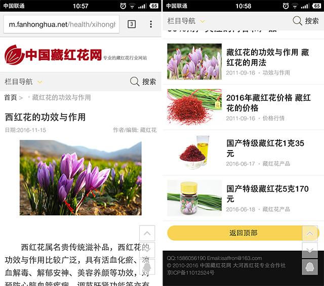 新版手機站文章內容頁面截圖