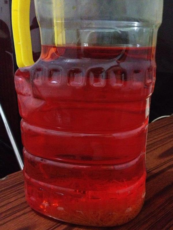 5克藏紅花泡酒