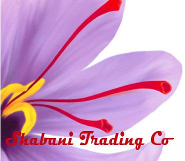 Shabani Trading Co Logo